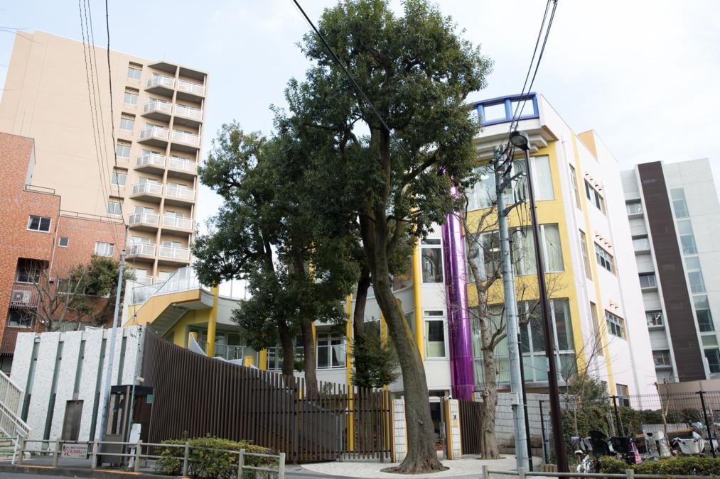 新宿三つの木保育園もりさんかくしかくの保育士求人(正職員)